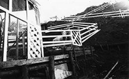 神奈川県厚木市の飼育施設